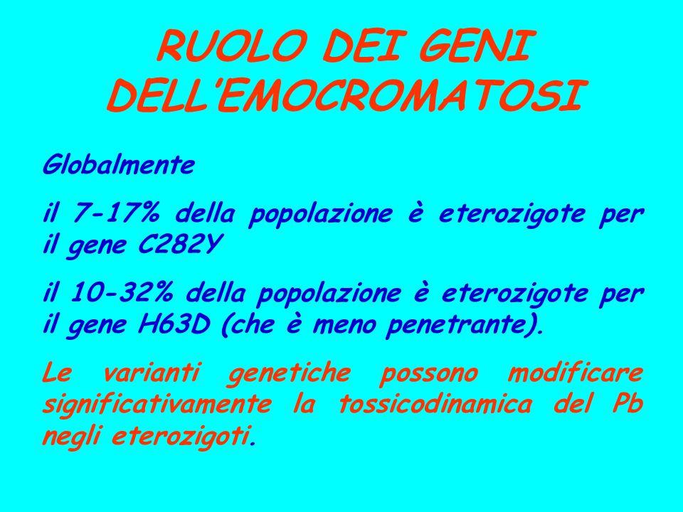 RUOLO DEI GENI DELLEMOCROMATOSI Globalmente il 7-17% della popolazione è eterozigote per il gene C282Y il 10-32% della popolazione è eterozigote per i