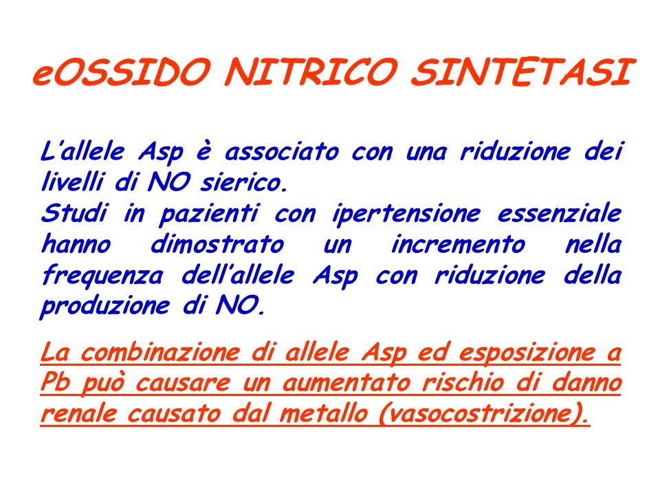 eOSSIDO NITRICO SINTETASI Lallele Asp è associato con una riduzione dei livelli di NO sierico. Studi in pazienti con ipertensione essenziale hanno dim