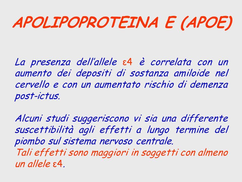 APOLIPOPROTEINA E (APOE) La presenza dellallele ε4 è correlata con un aumento dei depositi di sostanza amiloide nel cervello e con un aumentato rischi