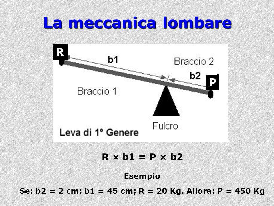 InterventiProContro Esercizio/attività fisicaA Informazioni/istruzioniA Fasce/supporti lombariA Plantari/scarpe ortopedicheA Ergonomia fisicaC Ergonomia organizzativaC Interv.