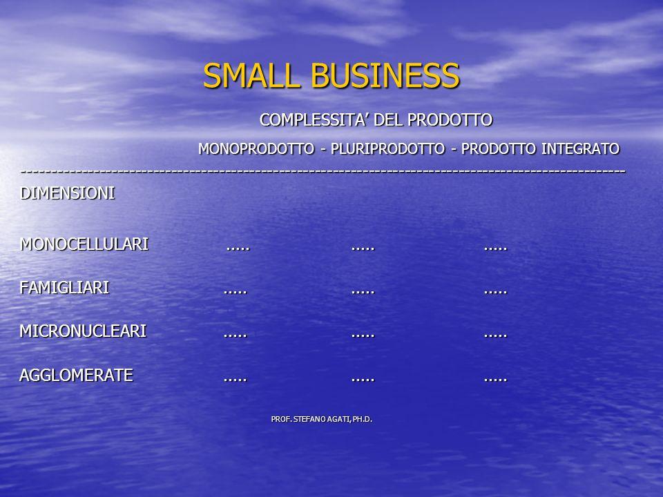 SMALL BUSINESS COMPLESSITA DEL PRODOTTO COMPLESSITA DEL PRODOTTO MONOPRODOTTO - PLURIPRODOTTO - PRODOTTO INTEGRATO MONOPRODOTTO - PLURIPRODOTTO - PRODOTTO INTEGRATO-----------------------------------------------------------------------------------------------------DIMENSIONI MONOCELLULARI...............