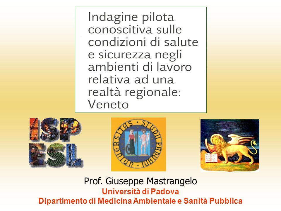 Prof. Giuseppe Mastrangelo Università di Padova Dipartimento di Medicina Ambientale e Sanità Pubblica