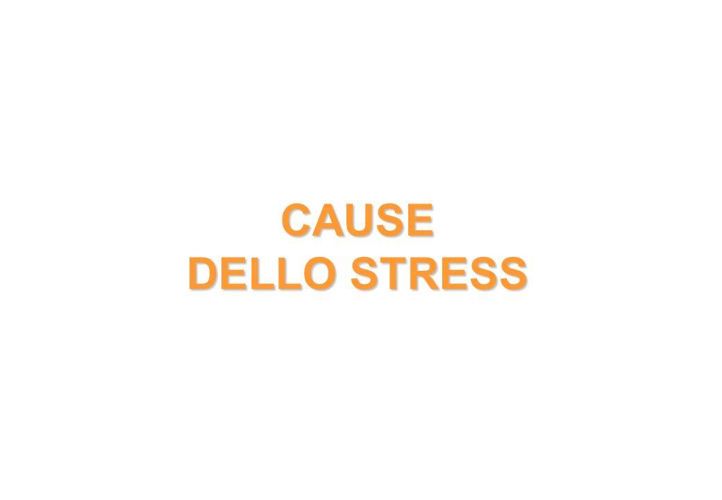 CAUSE DELLO STRESS