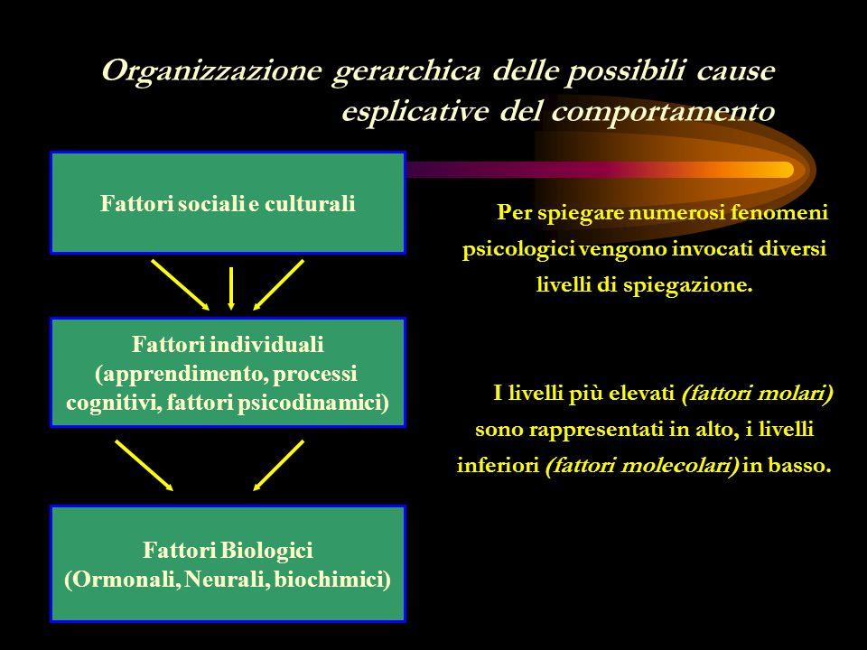 La psicologia generale La psicologia sociale La sociologia Tutte si interessano al comportamento: La psicologia generale al comportamento del singolo individuo; La psicologia sociale al comportamento dellindividuo in interazione con altri individui (allinterno di un gruppo); La sociologia al comportamento di un gruppo di individui.