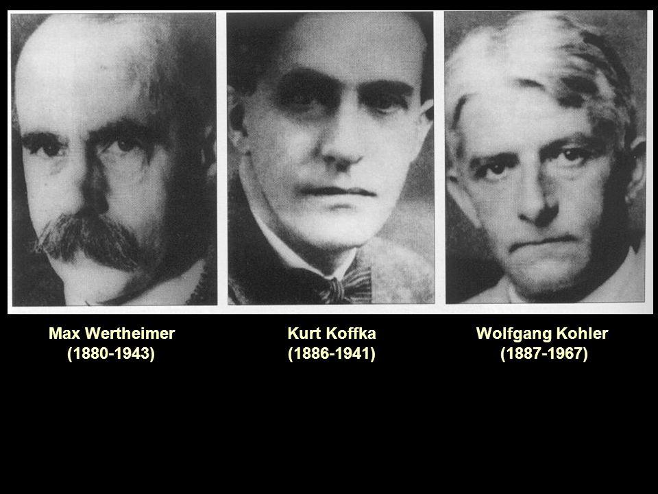 La psicologia della Gestalt Parallelamente al comportamentismo americano nasce in Europa la psicologia della Gestalt (forma organizzata o configurazione).