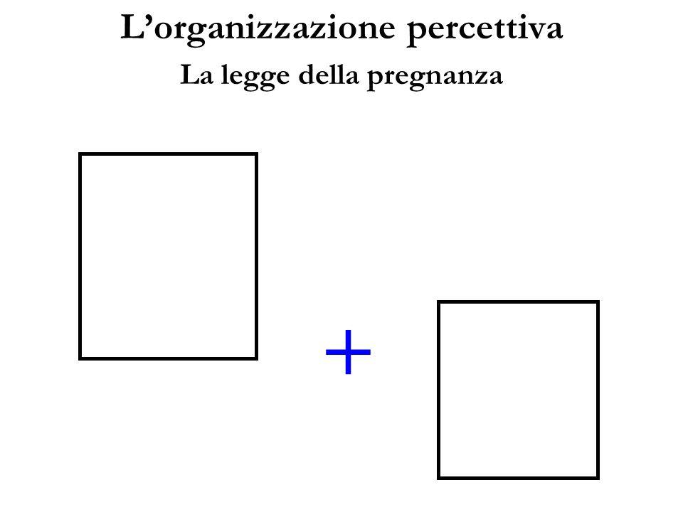 Lorganizzazione percettiva La legge della pregnanza