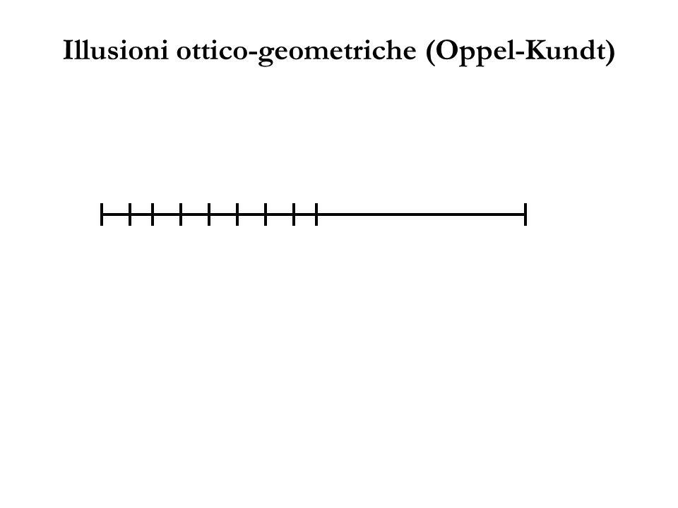 Illusioni ottico-geometriche (Oppel-Kundt)