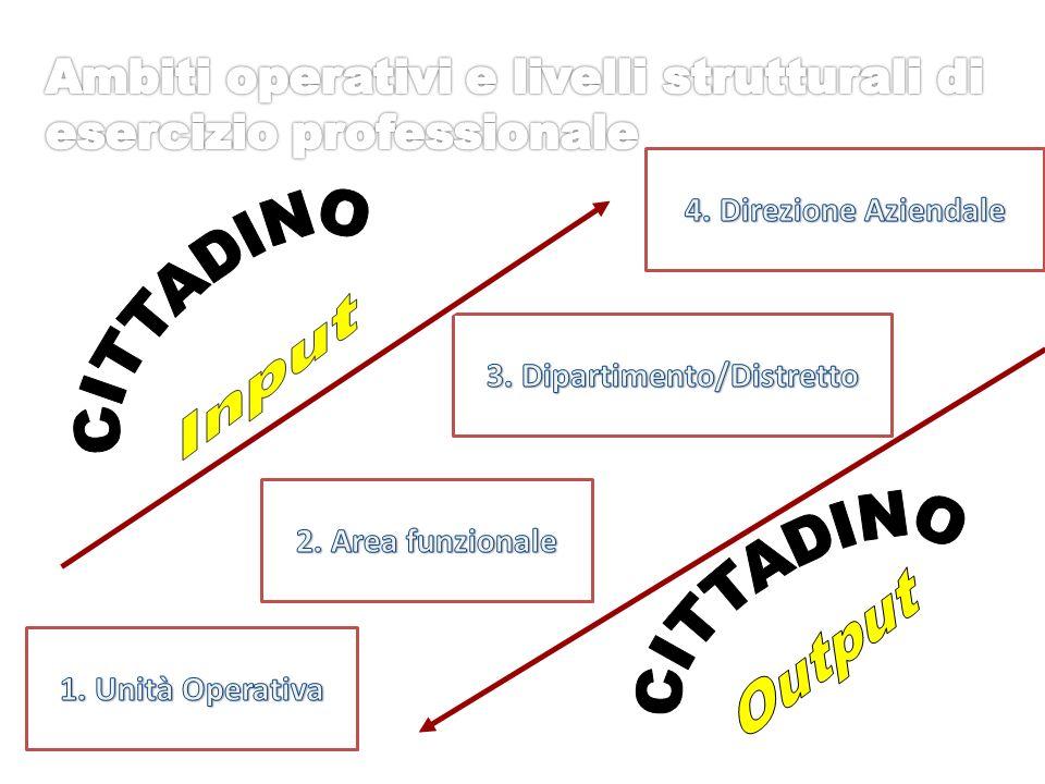 Sviluppo formativo, professionale e economico ESPERIENZA PROFESSIONALE CULTURA/FORMAZIONE PROFESSIONALE