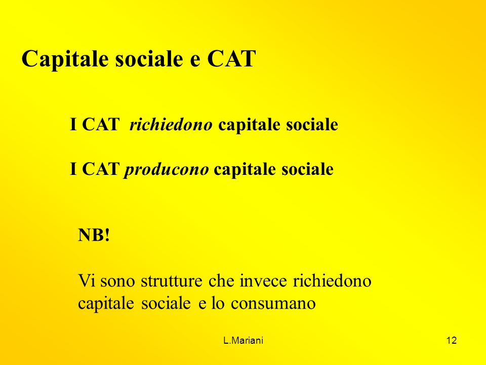 L.Mariani12 Capitale sociale e CAT I CAT richiedono capitale sociale I CAT producono capitale sociale NB! Vi sono strutture che invece richiedono capi