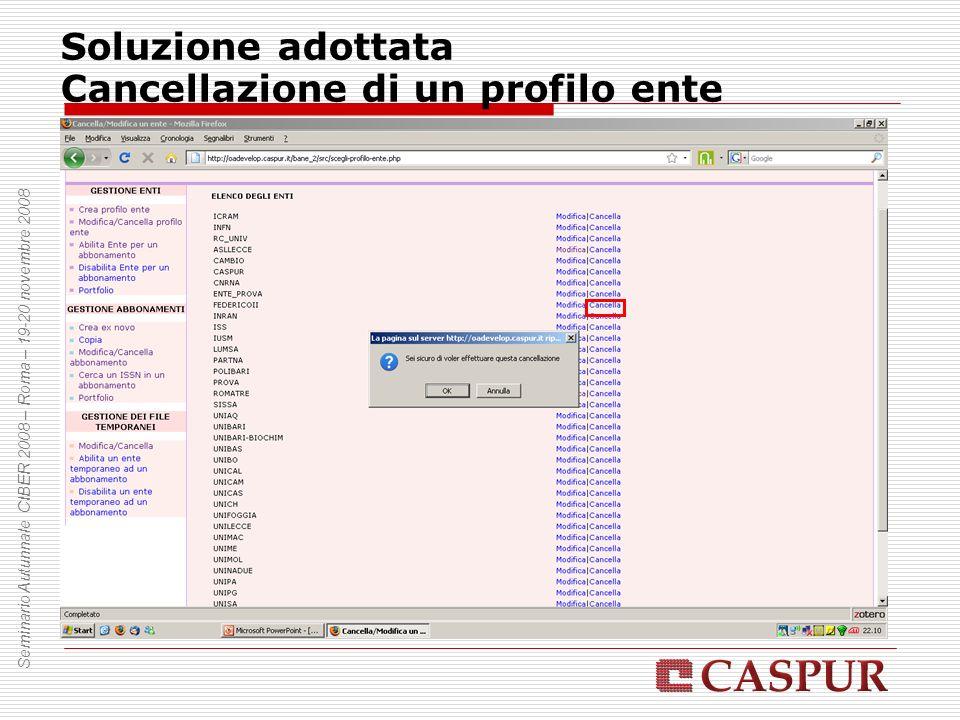 Soluzione adottata Cancellazione di un profilo ente Seminario Autunnale CIBER 2008 – Roma – 19-20 novembre 2008