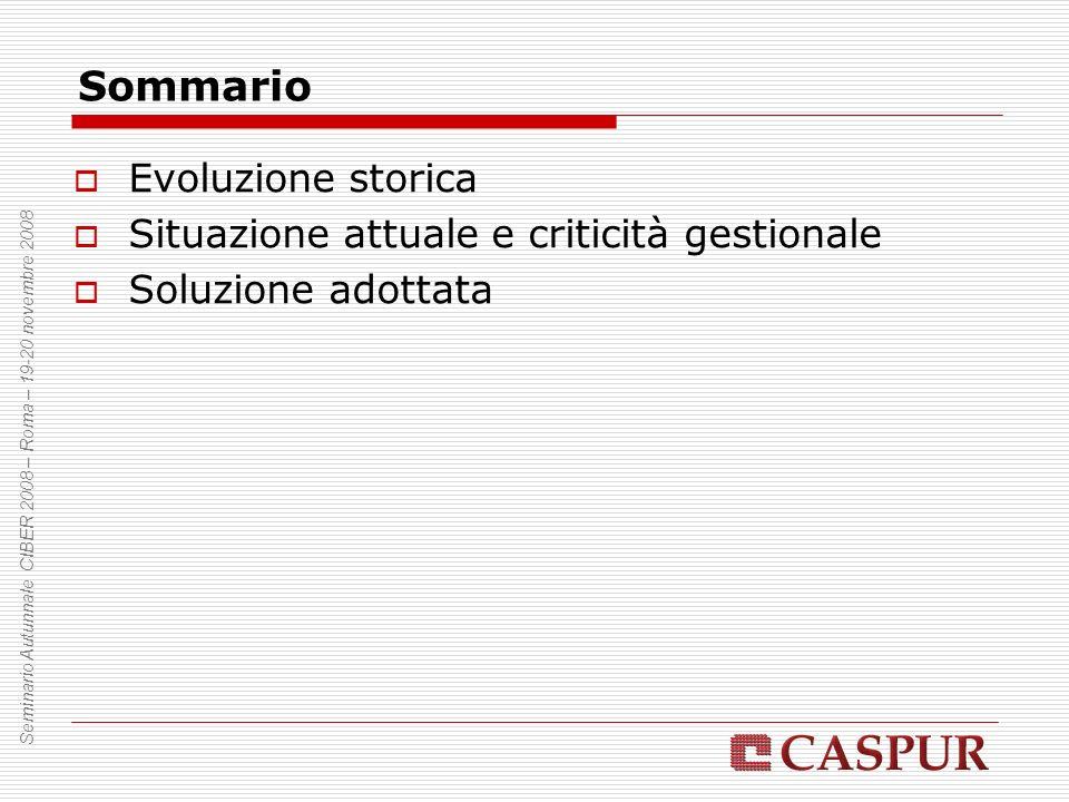 Evoluzione storica Numero di atenei/enti presenti Seminario Autunnale CIBER 2008 – Roma – 19-20 novembre 2008