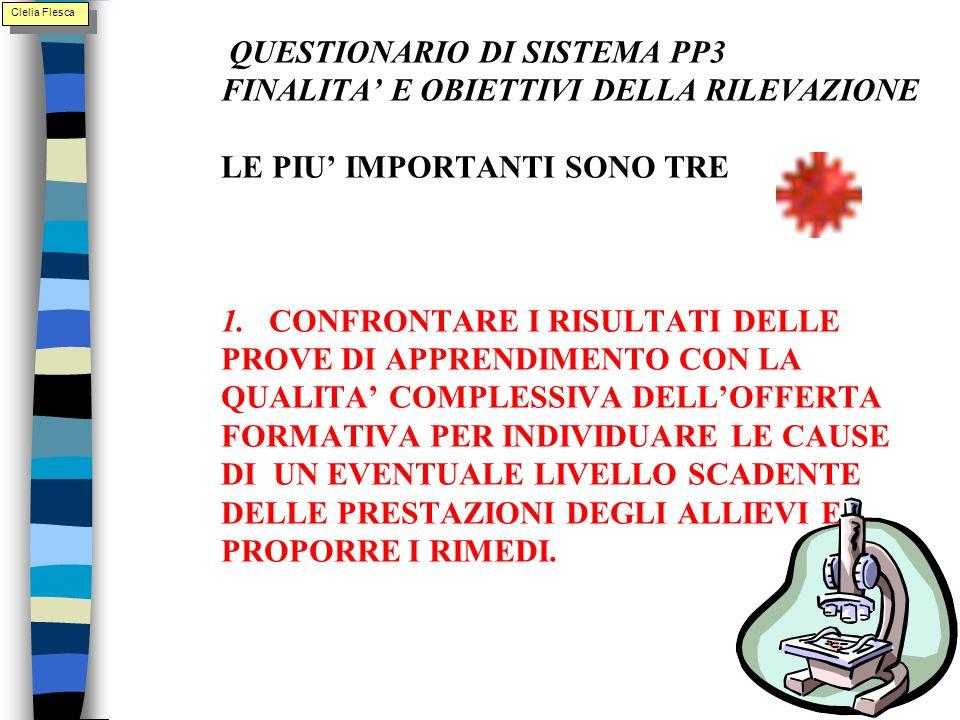 1. QUESTIONARIO DI SISTEMA PP3 FINALITA E OBIETTIVI DELLA RILEVAZIONE LE PIU IMPORTANTI SONO TRE 1.