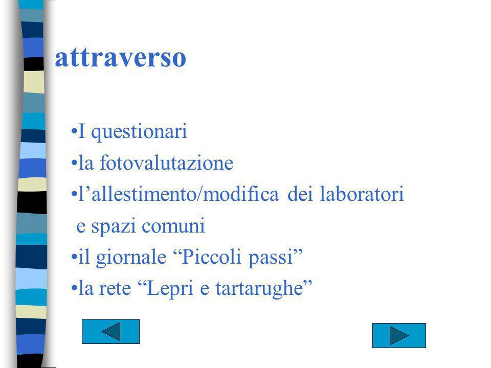attraverso I questionari la fotovalutazione lallestimento/modifica dei laboratori e spazi comuni il giornale Piccoli passi la rete Lepri e tartarughe