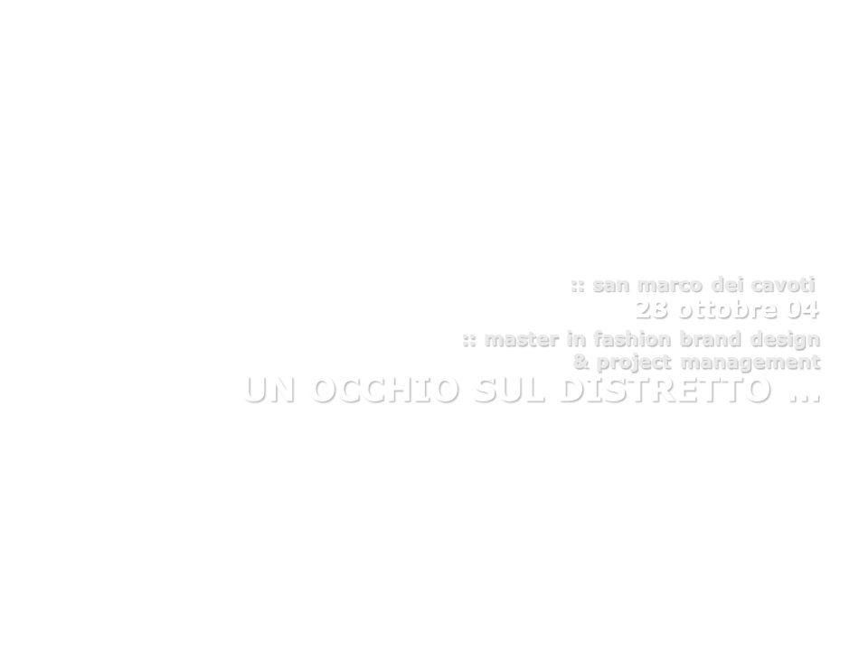 28 ottobre 04 :: master in fashion brand design & project management & project management UN OCCHIO SUL DISTRETTO … :: san marco dei cavoti