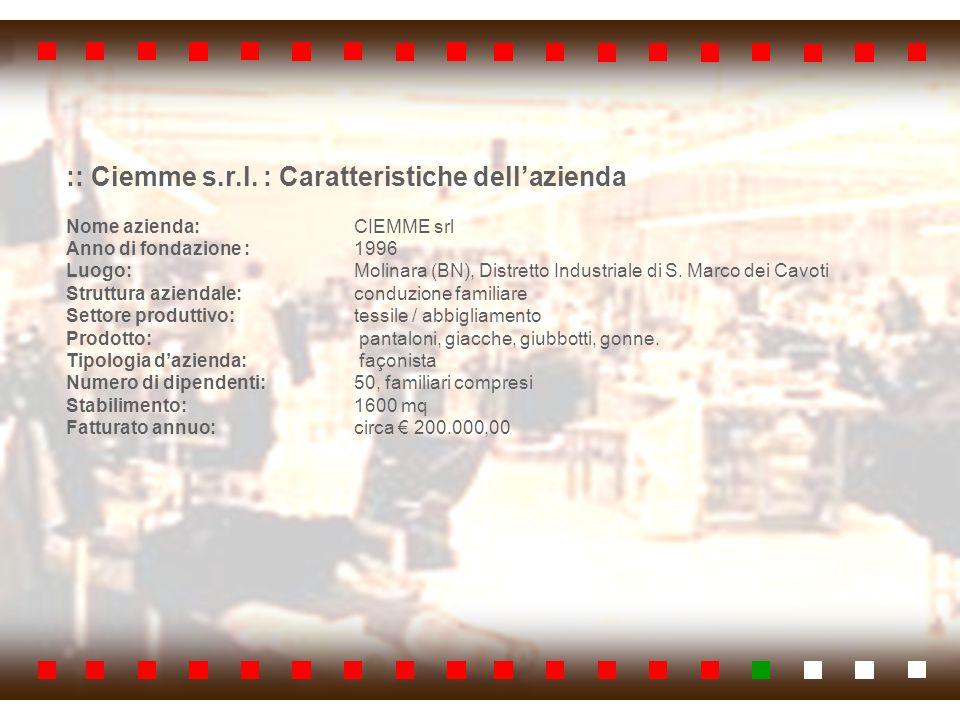 :: Ciemme s.r.l. : Caratteristiche dellazienda Nome azienda: CIEMME srl Anno di fondazione : 1996 Luogo: Molinara (BN), Distretto Industriale di S. Ma