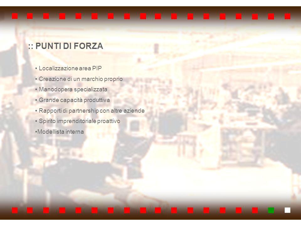 :: PUNTI DI FORZA Localizzazione area PIP Creazione di un marchio proprio Manodopera specializzata Grande capacità produttiva Rapporti di partnership