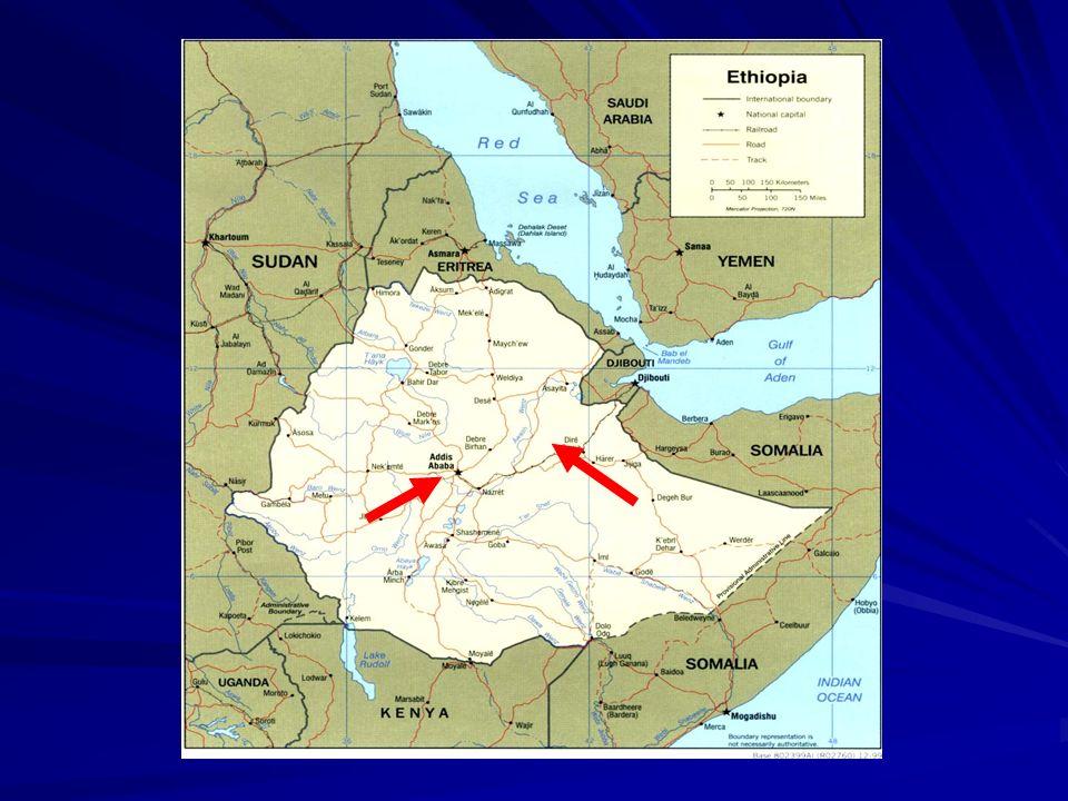 La DGCS svilupperà direttamente – nella forma della gestione diretta - la componente di appoggio istituzionale al MOLSA (Ministry of Labour and Social Affairs) la componente a livello regionale/BOLSA (Bureau of Labour and Social Affairs) Addis Abeba e Oromia – è affidata al Consorzio di ONG COOPI (capofila)-CISP.