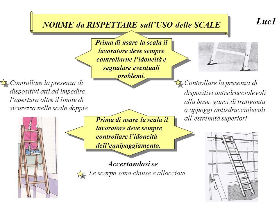 la scala scelta consenta di eseguire il lavoro non superando gli ultimi due gradini della piattaforma.
