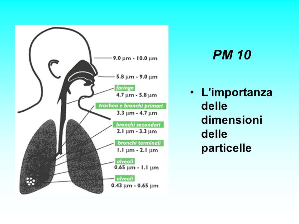 PM 10 L'importanza delle dimensioni delle particelle