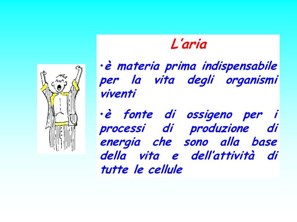 Laria è materia prima indispensabile per la vita degli organismi viventi è fonte di ossigeno per i processi di produzione di energia che sono alla bas