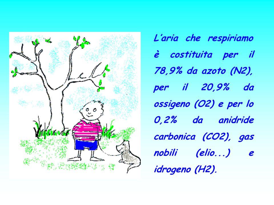 Laria che respiriamo è costituita per il 78,9% da azoto (N2), per il 20,9% da ossigeno (O2) e per lo 0,2% da anidride carbonica (CO2), gas nobili (eli