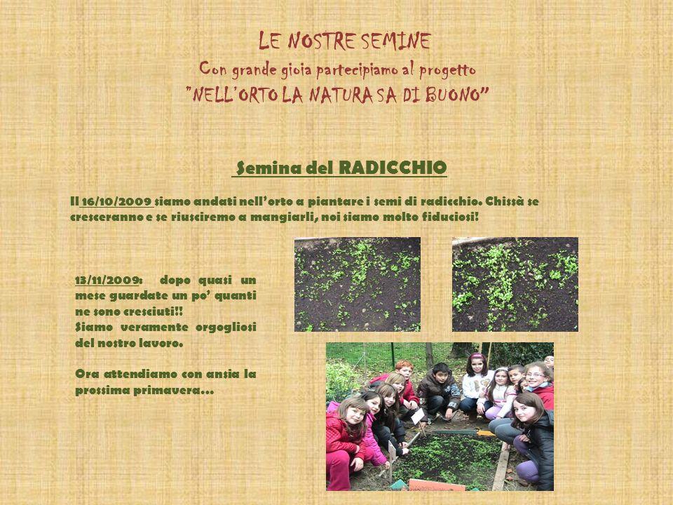LE NOSTRE SEMINE Con grande gioia partecipiamo al progetto NELLORTO LA NATURA SA DI BUONO Semina del RADICCHIO Il 16/10/2009 siamo andati nellorto a piantare i semi di radicchio.