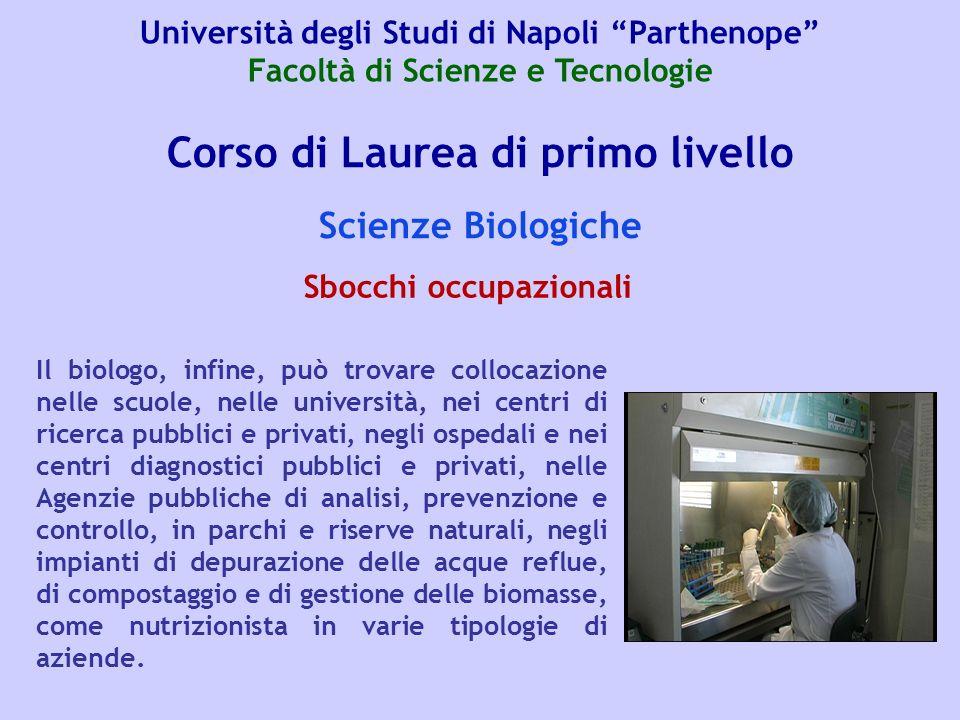 Corso di Laurea di primo livello Scienze Biologiche Il biologo, infine, può trovare collocazione nelle scuole, nelle università, nei centri di ricerca