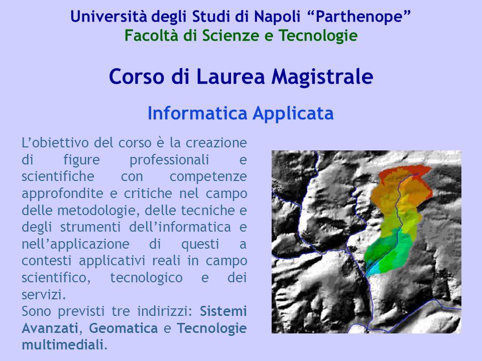 Corso di Laurea Magistrale Lobiettivo del corso è la creazione di figure professionali e scientifiche con competenze approfondite e critiche nel campo