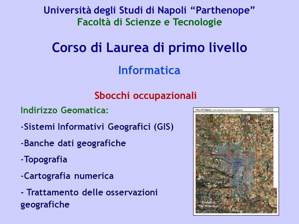Corso di Laurea di primo livello Informatica Indirizzo Geomatica: -Sistemi Informativi Geografici (GIS) -Banche dati geografiche -Topografia -Cartogra