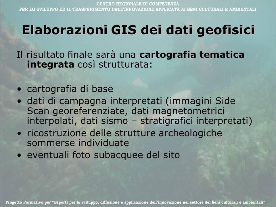 Elaborazioni GIS dei dati geofisici Il risultato finale sarà una cartografia tematica integrata così strutturata: cartografia di base dati di campagna