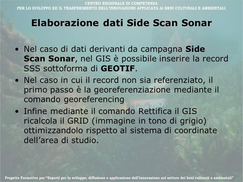 Elaborazione dati Side Scan Sonar Nel caso di dati derivanti da campagna Side Scan Sonar, nel GIS è possibile inserire la record SSS sottoforma di GEO
