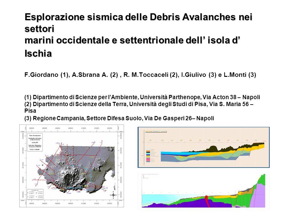 Esplorazione sismica delle Debris Avalanches nei settori marini occidentale e settentrionale dell isola d Ischia Esplorazione sismica delle Debris Ava