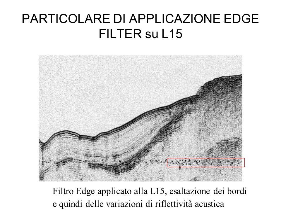 PARTICOLARE DI APPLICAZIONE EDGE FILTER su L15 Filtro Edge applicato alla L15, esaltazione dei bordi e quindi delle variazioni di riflettività acustic