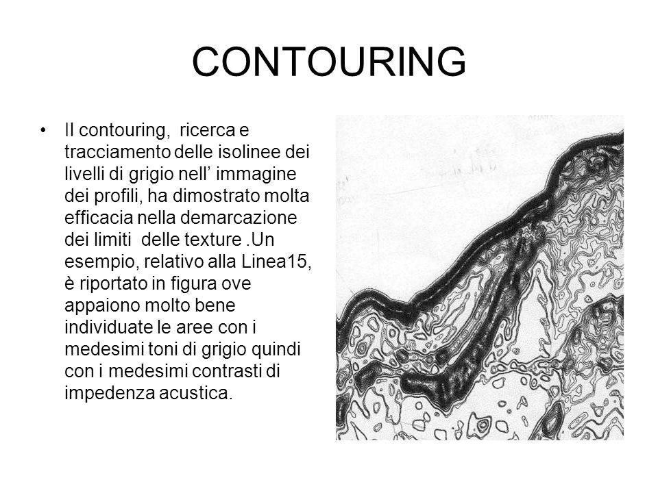 CONTOURING Il contouring, ricerca e tracciamento delle isolinee dei livelli di grigio nell immagine dei profili, ha dimostrato molta efficacia nella d