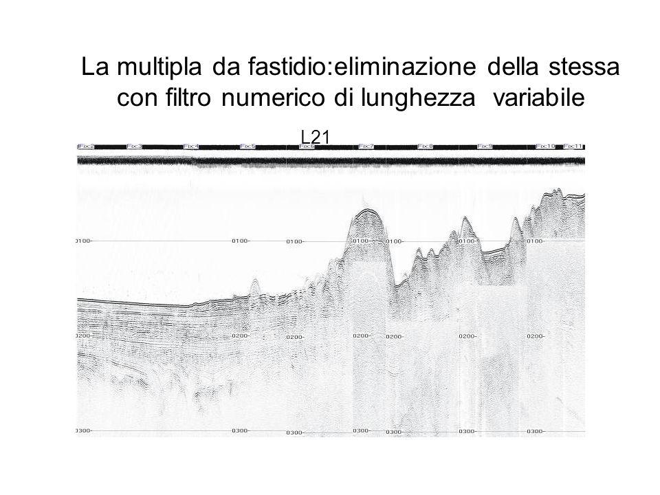 La multipla da fastidio:eliminazione della stessa con filtro numerico di lunghezza variabile L21