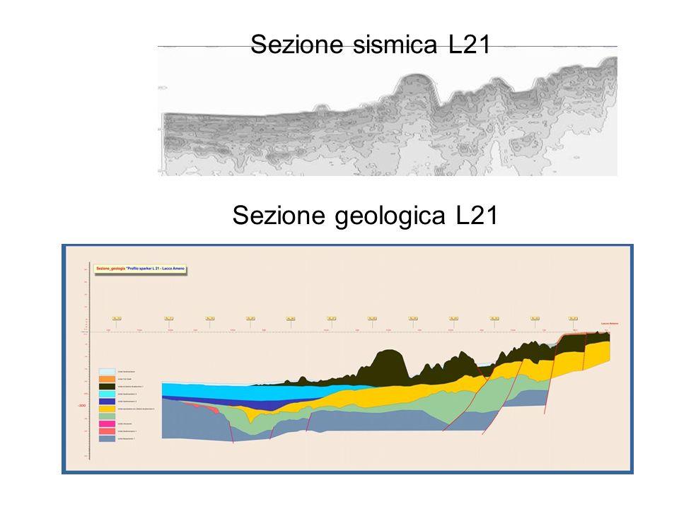 Sezione geologica L21 Sezione sismica L21