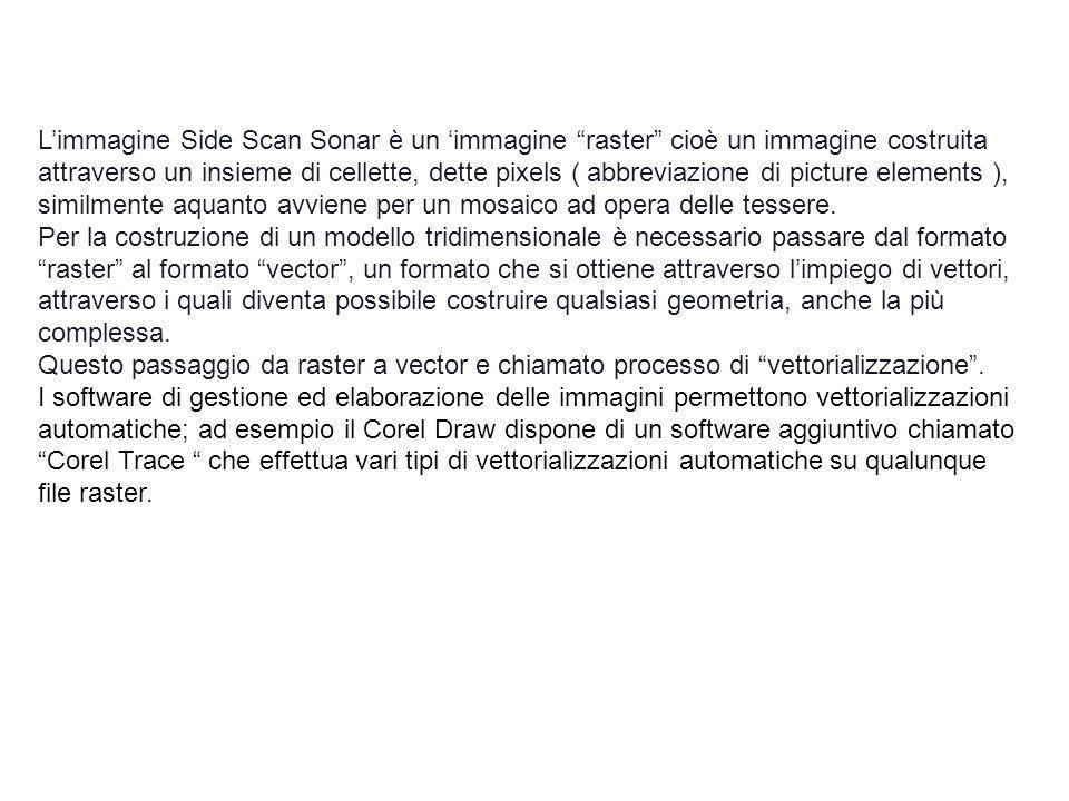 Limmagine Side Scan Sonar è un immagine raster cioè un immagine costruita attraverso un insieme di cellette, dette pixels ( abbreviazione di picture e