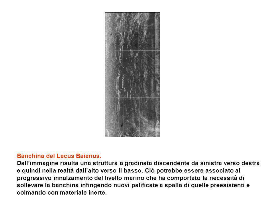 Banchina del Lacus Baianus. Dallimmagine risulta una struttura a gradinata discendente da sinistra verso destra e quindi nella realtà dallalto verso i