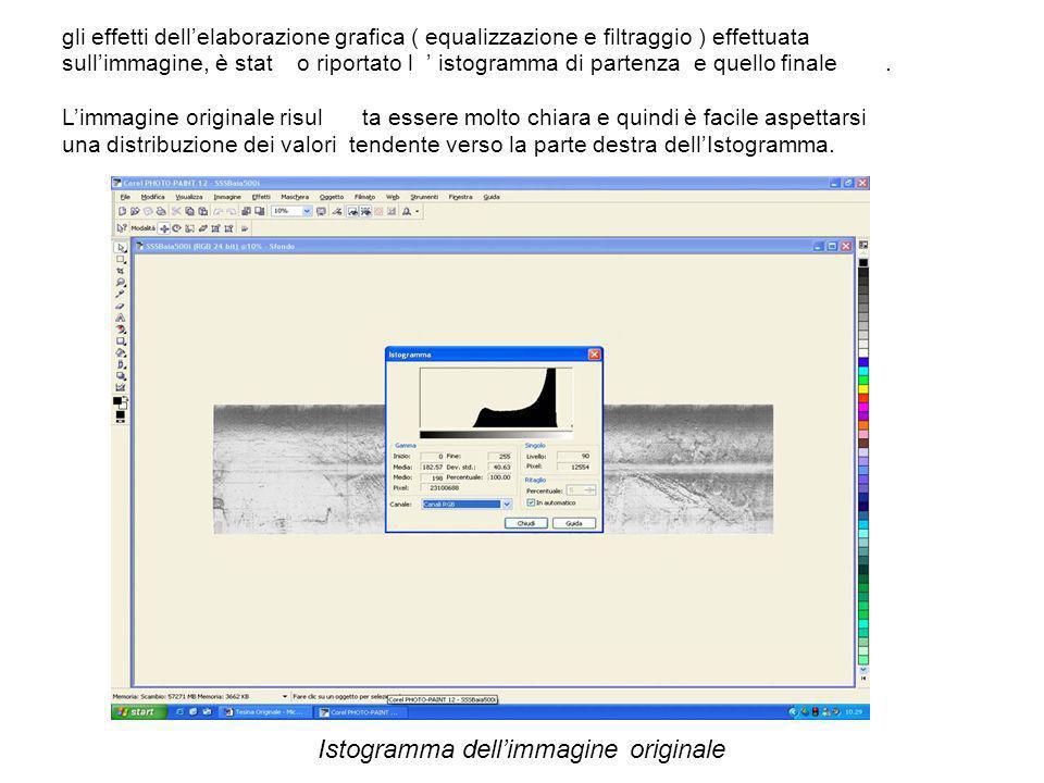 gli effetti dellelaborazione grafica ( equalizzazione e filtraggio ) effettuata sullimmagine, è stato riportato l istogramma di partenza e quello fina