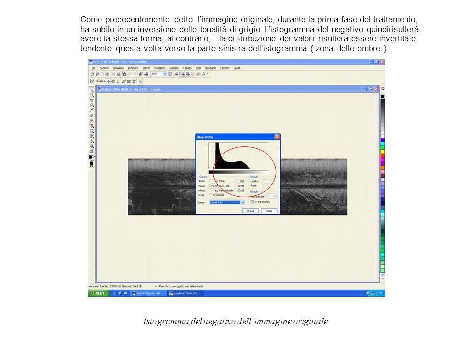 Limmagine Side Scan Sonar è un immagine raster cioè un immagine costruita attraverso un insieme di cellette, dette pixels ( abbreviazione di picture elements ), similmente aquanto avviene per un mosaico ad opera delle tessere.