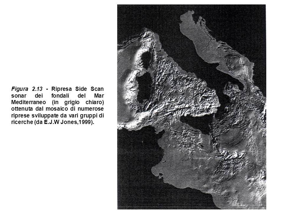 Figura 2.13 - Ripresa Side Scan sonar dei fondali del Mar Mediterraneo (in grigio chiaro) ottenuta dal mosaico di numerose riprese sviluppate da vari
