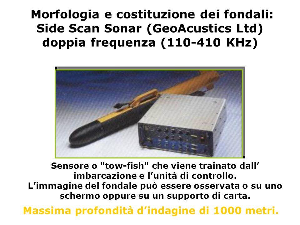 Morfologia e costituzione dei fondali: Side Scan Sonar (GeoAcustics Ltd) doppia frequenza (110-410 KHz) Sensore o
