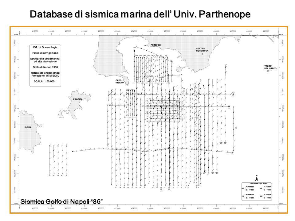 Database di sismica marina dell Univ. Parthenope Sismica Golfo di Napoli 86