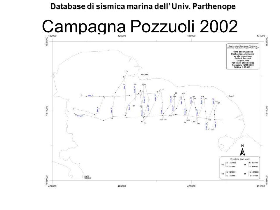 Campagna Pozzuoli 2002 Database di sismica marina dell Univ. Parthenope