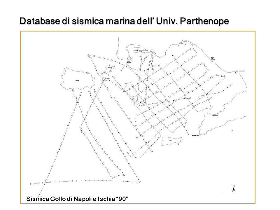 Sismica Golfo di Napoli e Ischia 90