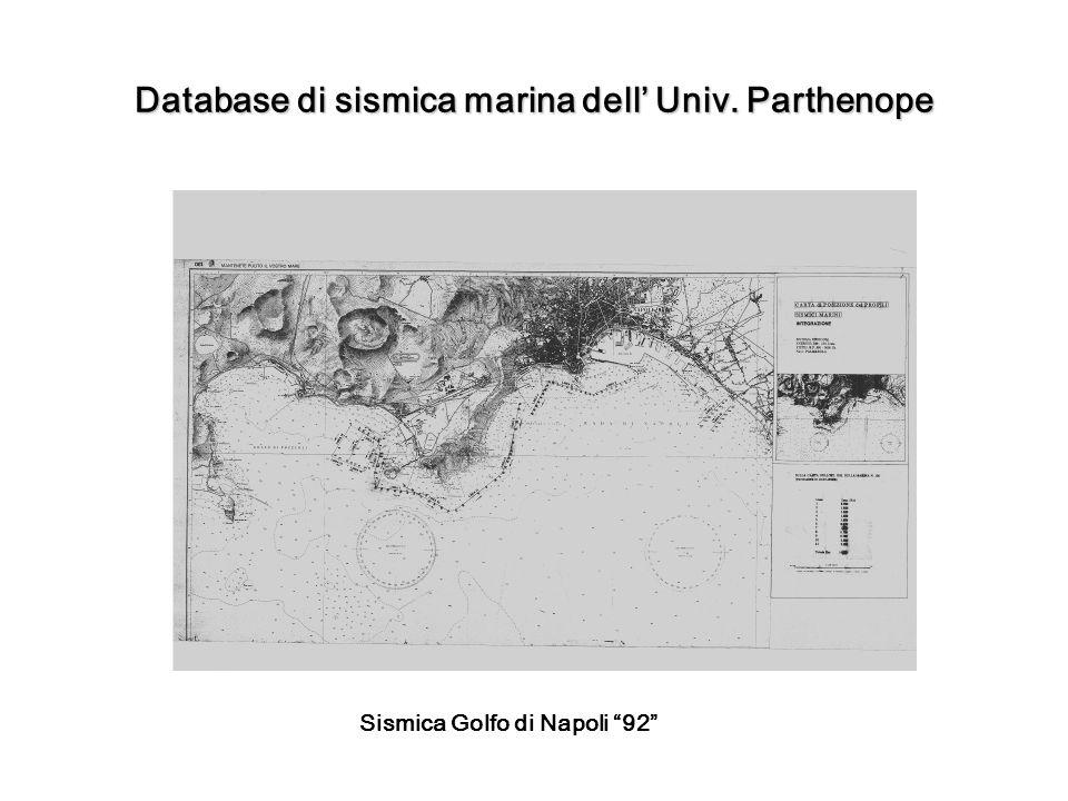 Database di sismica marina dell Univ. Parthenope Sismica Golfo di Napoli 92