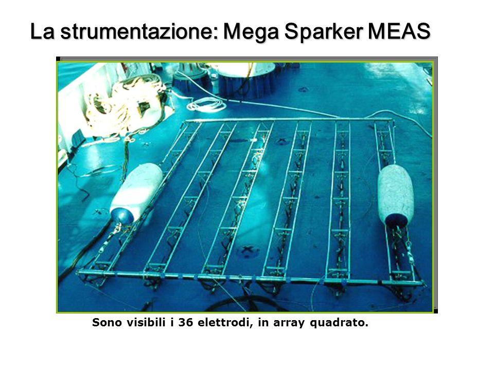 La strumentazione: Mega Sparker MEAS Sono visibili i 36 elettrodi, in array quadrato.