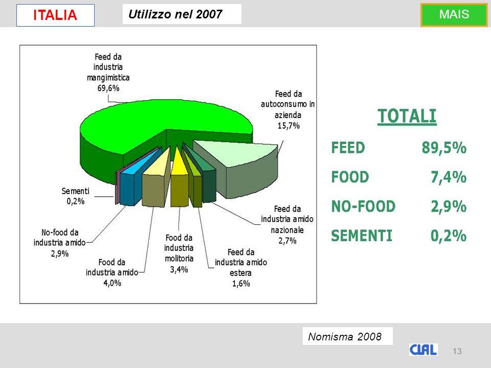 13 ITALIA Utilizzo nel 2007 Nomisma 2008 MAIS 13