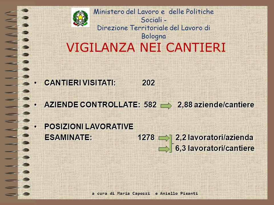 NUMERO AZIENDE ISPEZIONATE 2012 Totale 2.080 Edilizia 582 Edilizia 582 Terziario1.289 Altri settori 209 222 (38%) 703 (55%) 76 (36%) 76 (36%) Aziende ispezionate Di cui irregolari Totale 1.047 (48%) Ministero del Lavoro e delle Politiche Sociali - Direzione Territoriale del Lavoro di Bologna a cura di Maria Capozzi e Aniello Pisanti