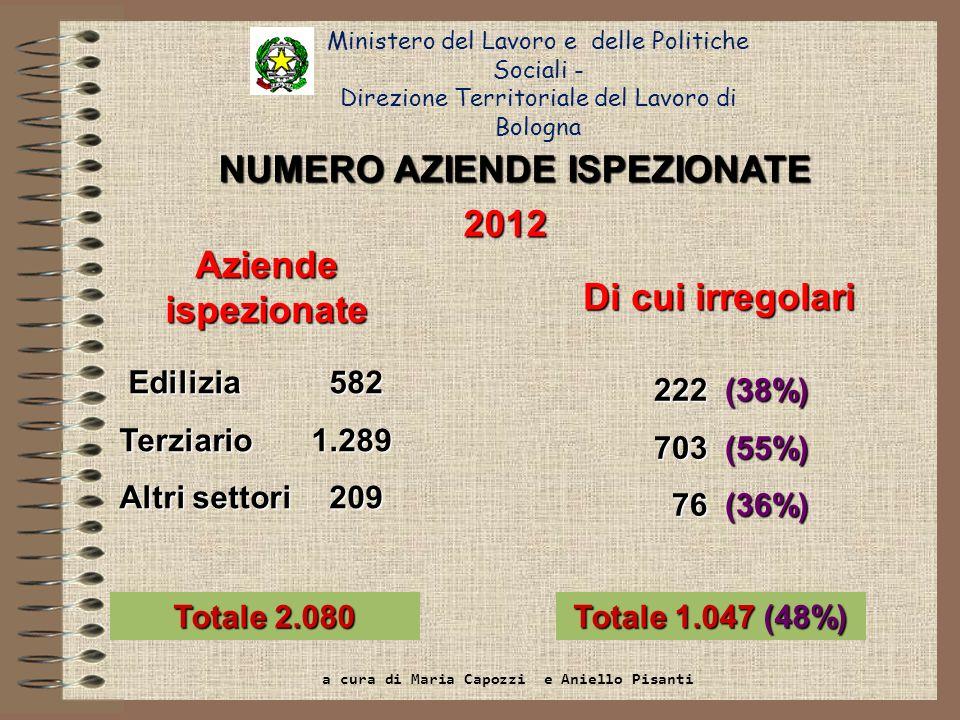 Ministero del Lavoro e delle Politiche Sociali - Direzione Territoriale del Lavoro di Bologna Dato NazionaleRegione Emilia Romagna Bologna Aziende47.837 (22% tot)3.401 (28% tot)582 (28% tot) - di cui irregolari29.134 (61%)1.429 (42%)222 (38%) Lavoratori irregolari di cui: 29.740 (43% tot)2.331 (41% tot)456 (36% tot) - in nero9.959 (33%)394 (17%)98 (21%) - riqualificati1689 (6%)228 (10%)45 (10%) - senza permesso di soggiorno 254234 Controlli nel settore delledilizia sullattività totale svolta nel 2012: confronto con dati nazionali e regionali a cura di Maria Capozzi e Aniello Pisanti